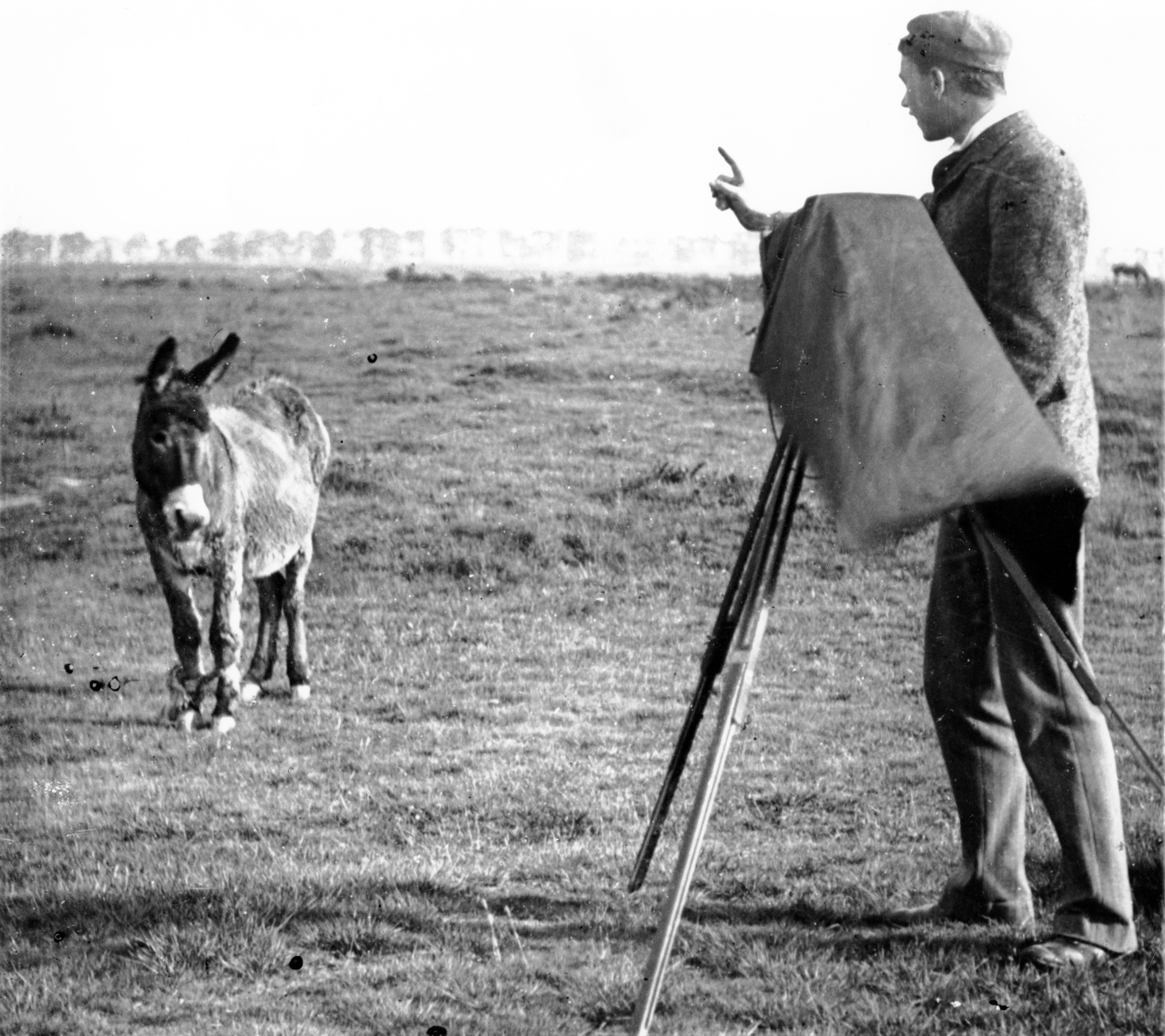 Photographer on Mitcham Common