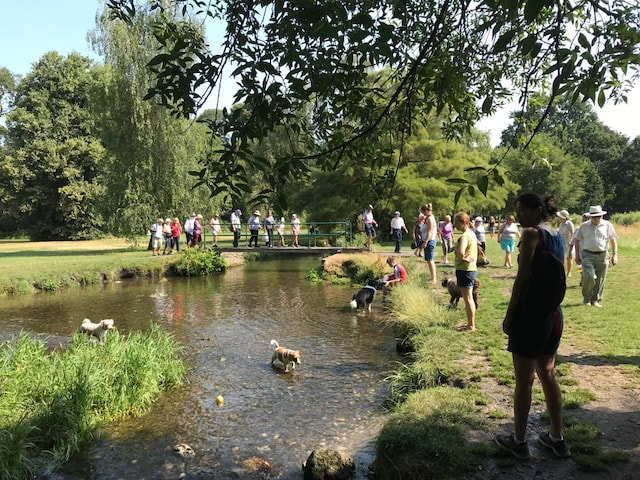 Walkers and families by the River Wandle 2019